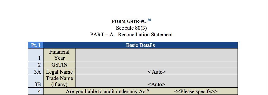 GST audit report part I baisc info
