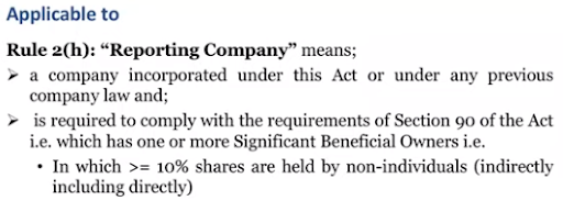definition of reporting company